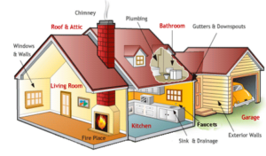 do home inspectors find mold growth