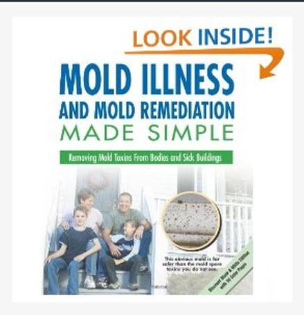 Free Mold Fact #4 Does Mold Die If The Moisture Problem Goes Away?