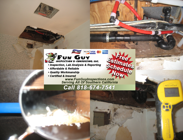 Risk of Mold | Los Angeles Plumbing repairs and maintenance help prevent water damage and mold growth