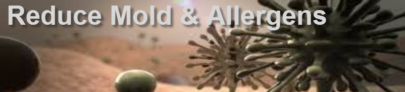 remove mold from my home and reduce allergens