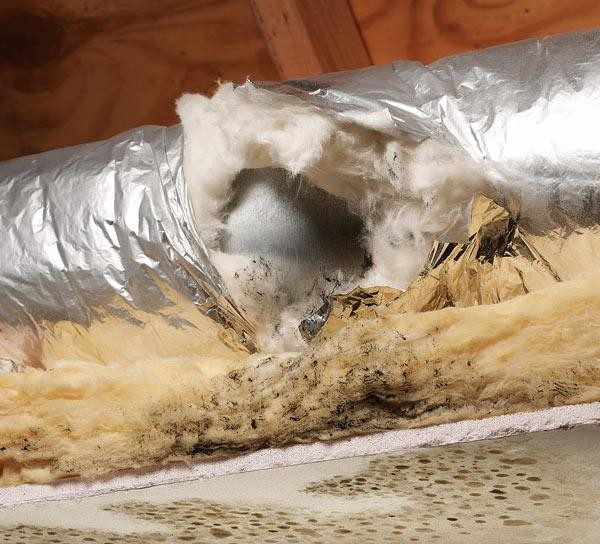 Tips about how to control mold  (2)