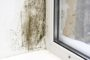 Reduce Condensation on your Windows