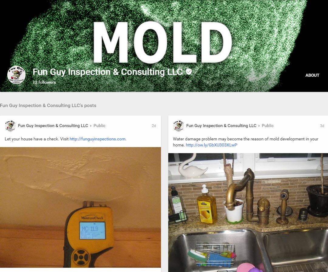 Local Mold Inspectors Google Mold Inspection Los Angeles