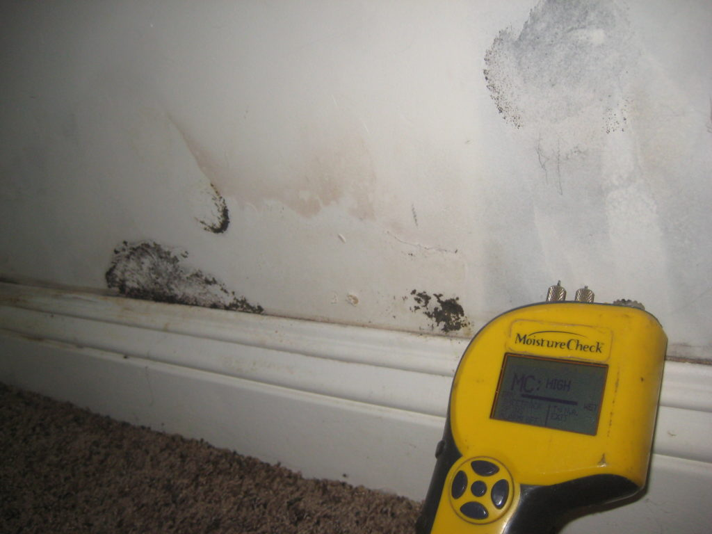 water damage and black mold growth on a wall in a LA home