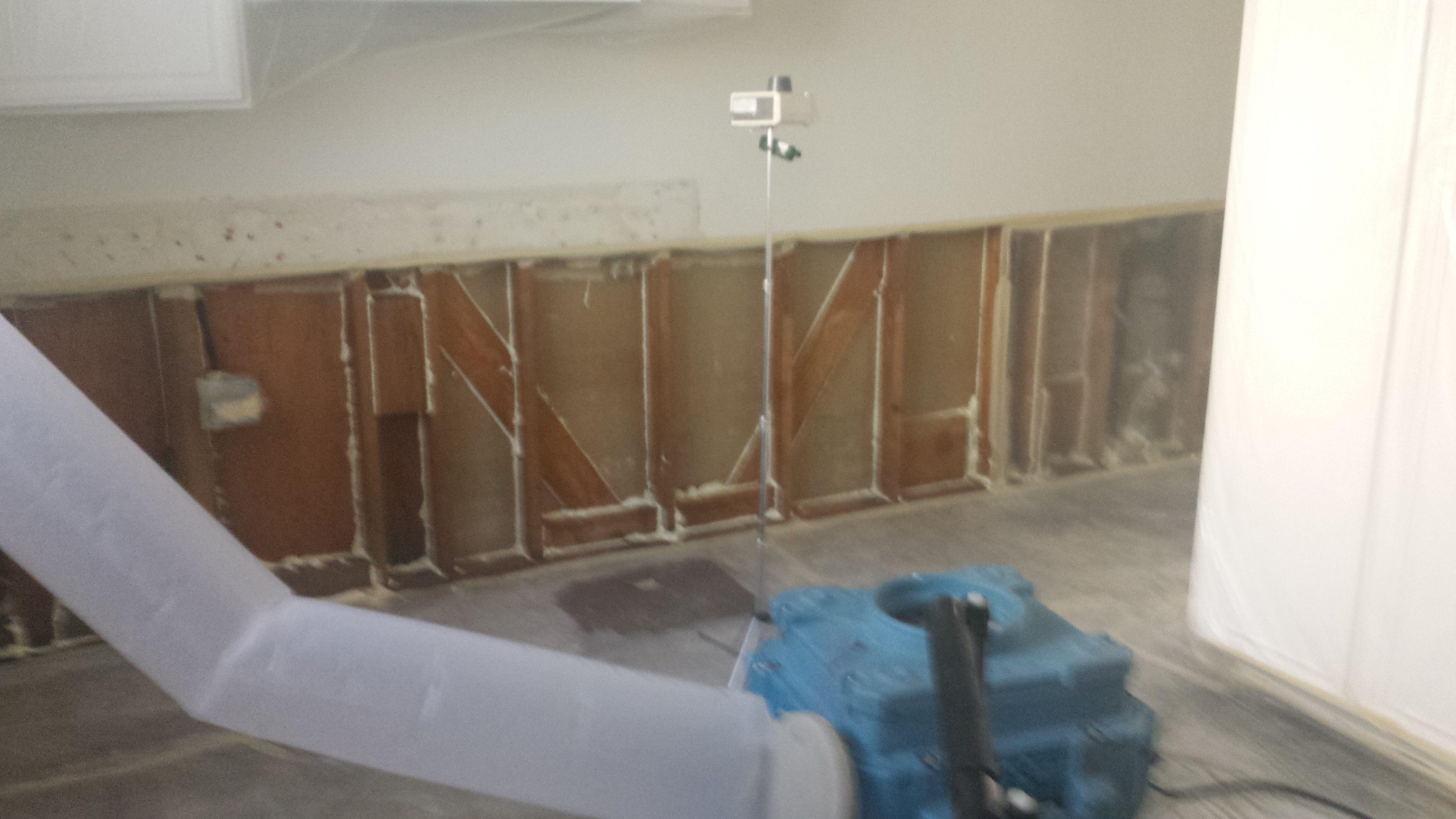 mold removal sealants