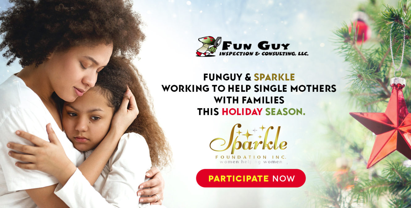 Helping Families Sparkle in 2018
