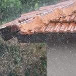 Rain and Water Damage – Will I get Mold?