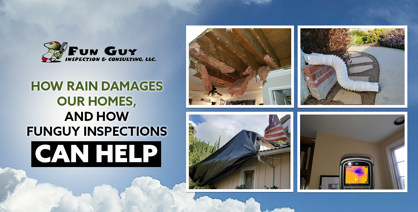 Inspect For Water Damage Problems In Los Angeles Fun Guy