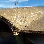 Ensure your Home or Office is Asbestos and Mold Free