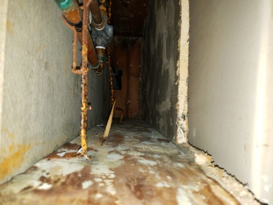 Mold found in 35 Howard County public schools in the past 11 months