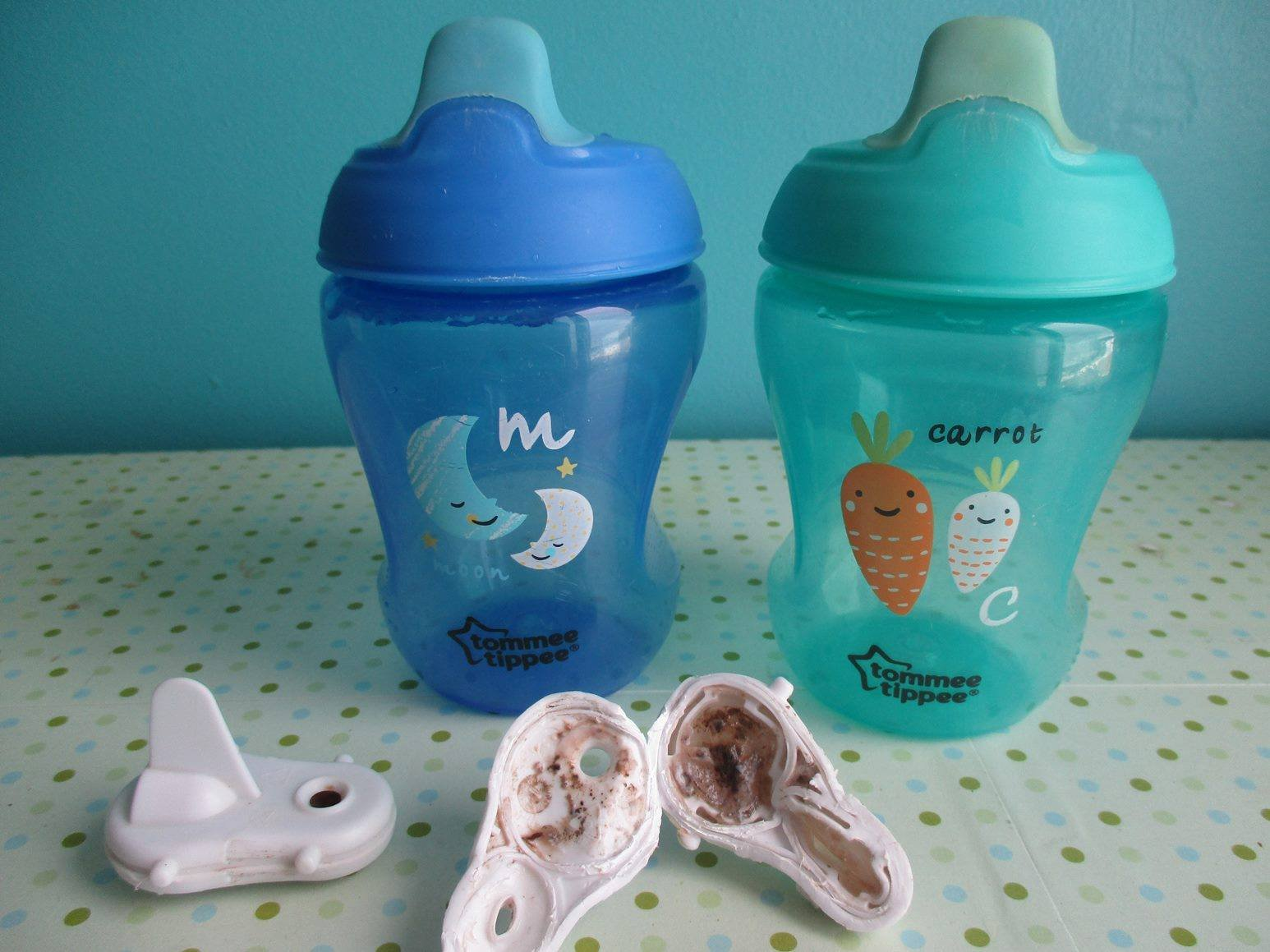 tommee tippee mold