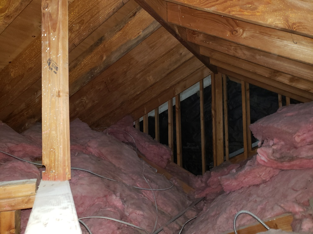 Attic Mold Is It A Big Deal Funguy Mold Inspections