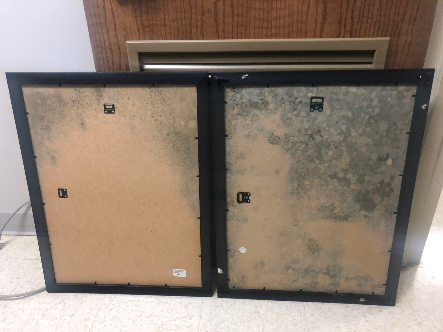 The backs of two poster frames, shown in August 2018, were destroyed by mold. The frames had been stored in the basement of Woods Hall, housing the anthropology department at the University of Maryland at College Park. (Andrea López/Andrea L�pez)