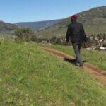 Woodland Hills Medicinal Mushroom Man